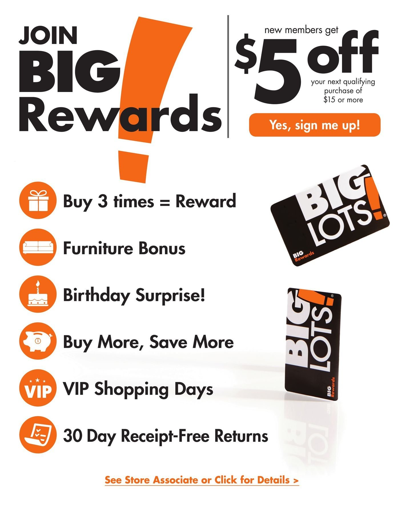 Big Lots Weekly January 19 - July 31, 2020 Page 37